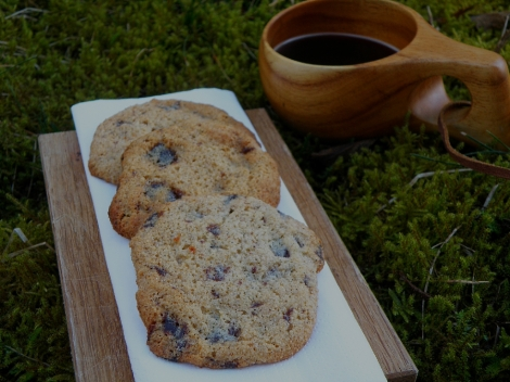 Lavkarbo cookies